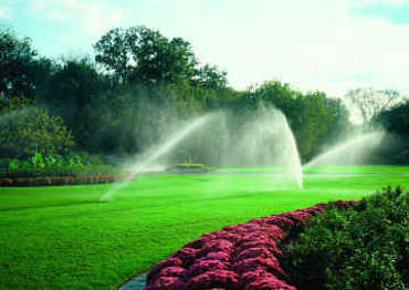 Sprinklers at Cascio Company